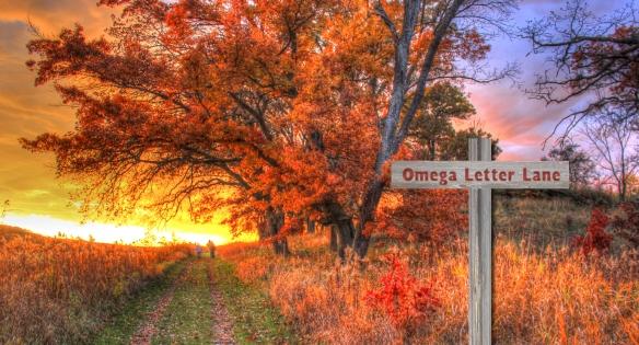 Omega Letter Lane_hi
